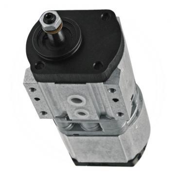 Daikin V15C23RJPX-95RC Piston Pump